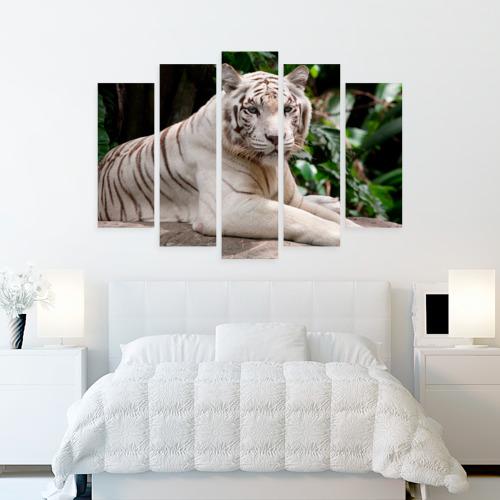 Модульная картина М20  Фото 02, Белый тигр