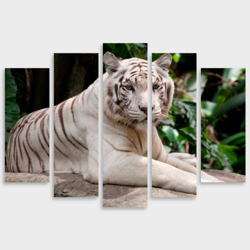 Модульная картина М20 Белый тигр