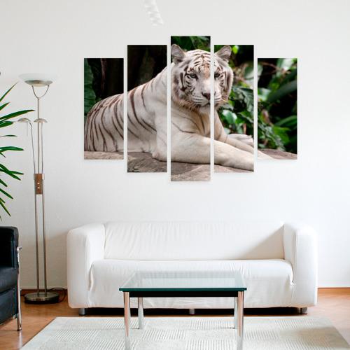 Модульная картина М20  Фото 09, Белый тигр