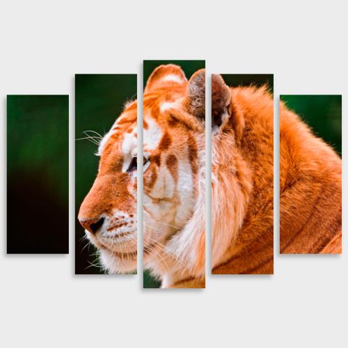 Модульная картина М20 Тигр