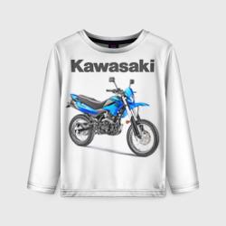 Kawasaky Stels 250