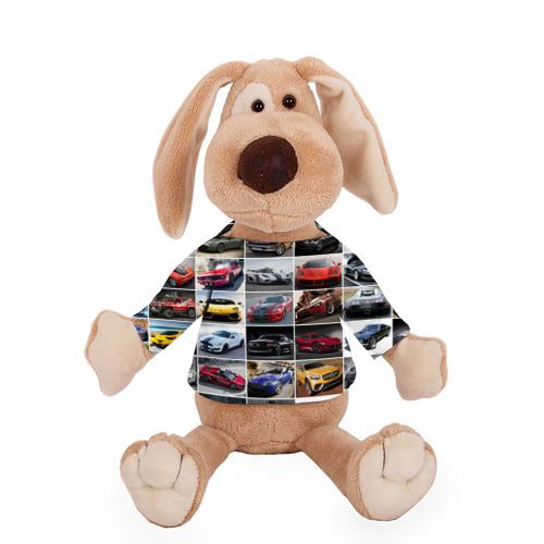 Собачка в футболке  Фото 01, Элитные авто