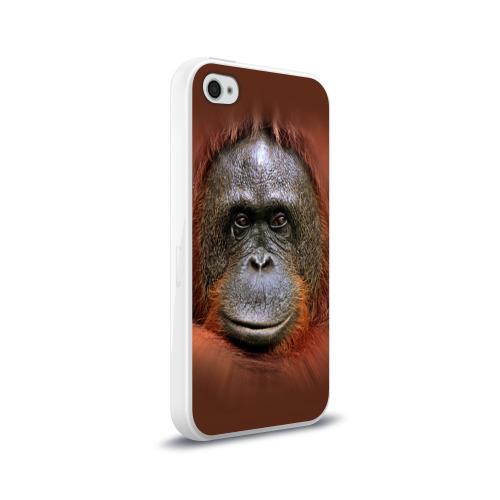 Чехол для Apple iPhone 4/4S силиконовый глянцевый Обезьяна Фото 01