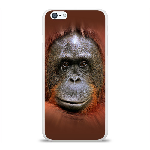 Чехол для Apple iPhone 6Plus/6SPlus силиконовый глянцевый Обезьяна Фото 01