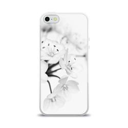 Белые цветочки 5