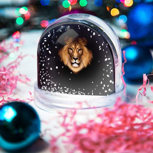 Водяной шар со снегом  Фото 03, Лев