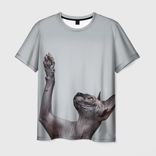 Мужская футболка 3D Сфинкс 3