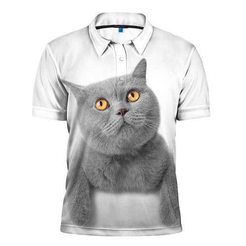 Мужская рубашка поло 3D  Фото 01, Британец 2