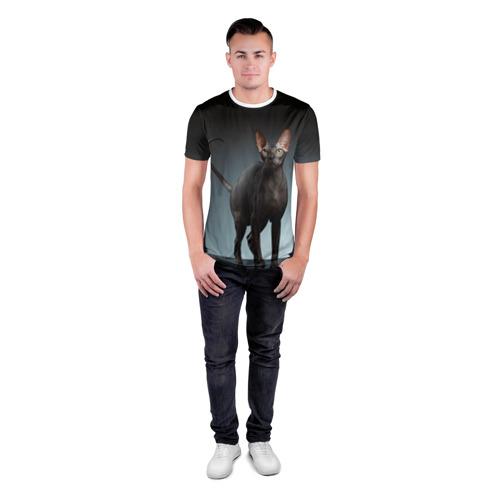 Мужская футболка 3D спортивная  Фото 04, Сфинкс 7