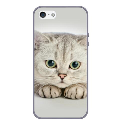 Чехол для iPhone 5/5S матовый Британец 6 Фото 01