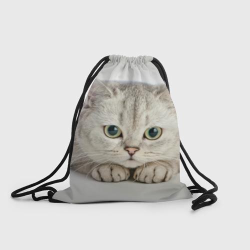 Рюкзак-мешок 3D Британец 6 Фото 01