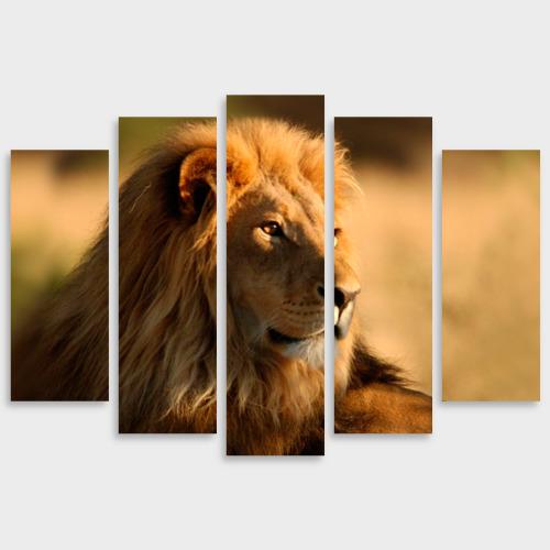 Модульная картина М20 Царь зверей