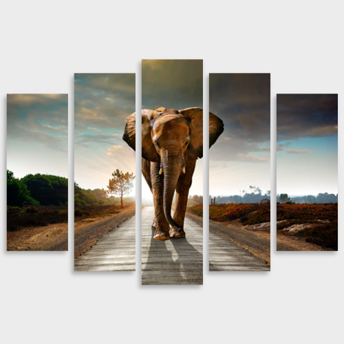 Модульная картина М20 Слон