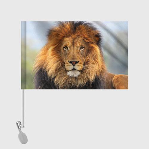 Флаг для автомобиля Красавец лев Фото 01