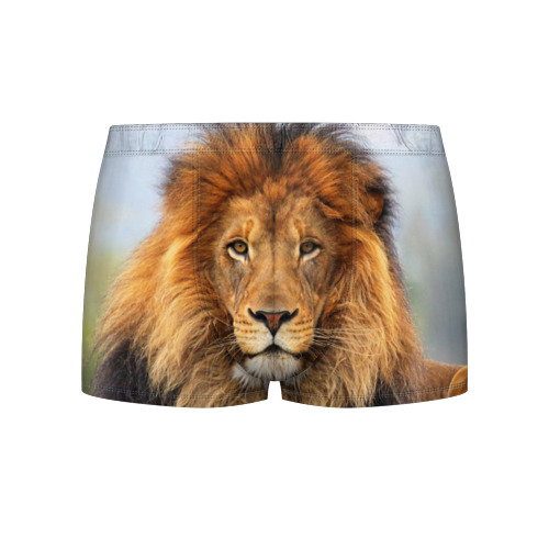 Мужские трусы 3D Красавец лев Фото 01