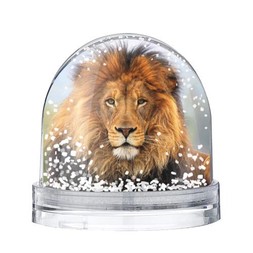 Водяной шар со снегом Красавец лев