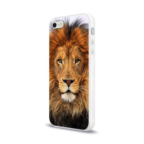Чехол для Apple iPhone 5/5S силиконовый глянцевый Красавец лев Фото 01