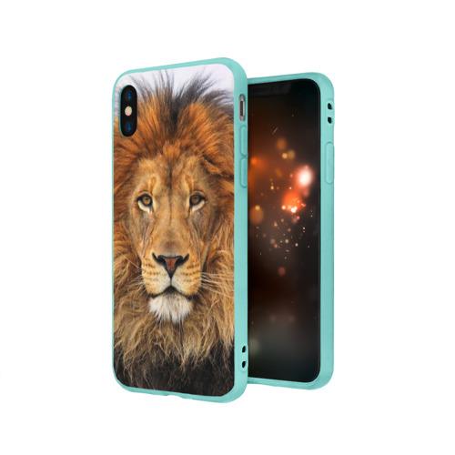 Чехол для iPhone X матовый Красавец лев Фото 01