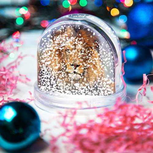 Водяной шар со снегом  Фото 04, Красавец лев