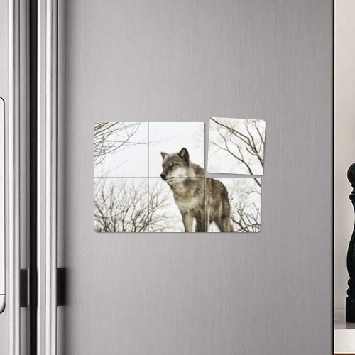 Магнитный плакат 3Х2  Фото 04, Волк во весь рост
