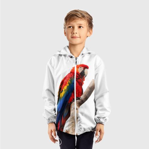 Детская ветровка 3D  Фото 03, Попугай