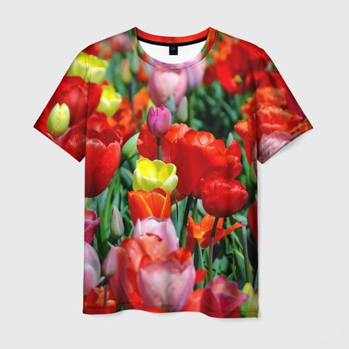 Мужская футболка 3D  Фото 03, Тюльпановый рай
