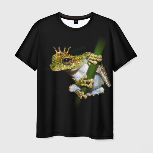 Мужская футболка 3D Царевна-Лягушка
