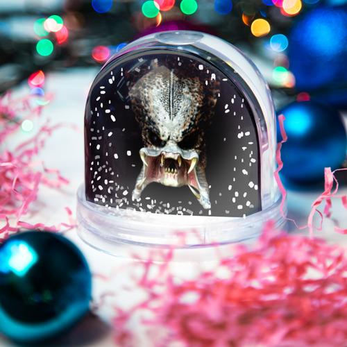 Водяной шар со снегом  Фото 03, Хищник