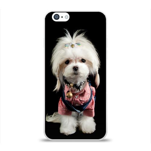 Чехол для Apple iPhone 6 силиконовый глянцевый  Фото 01, Хиппи пес