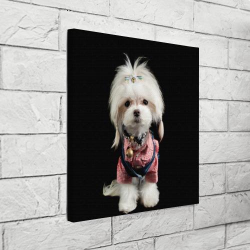 Холст квадратный  Фото 03, Хиппи пес