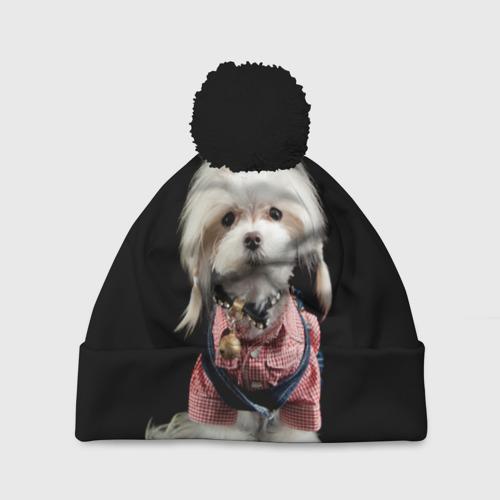 Хиппи пес