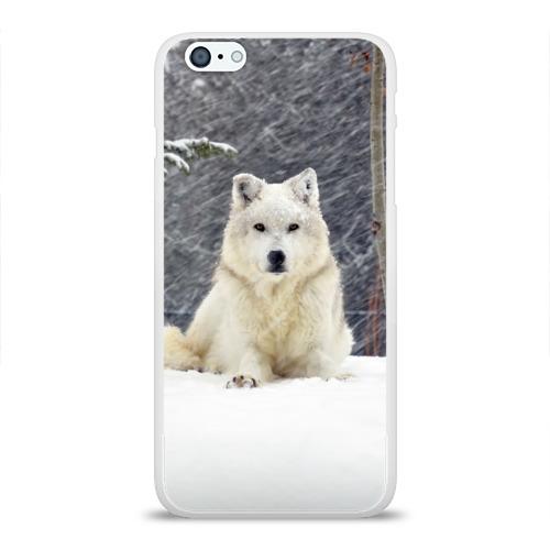 Чехол для Apple iPhone 6Plus/6SPlus силиконовый глянцевый  Фото 01, Snow