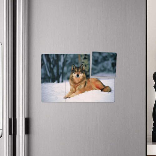 Магнитный плакат 3Х2  Фото 04, Рисунок