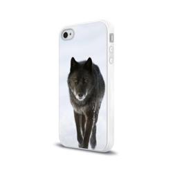 Черный волк