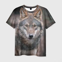 Wolf - интернет магазин Futbolkaa.ru