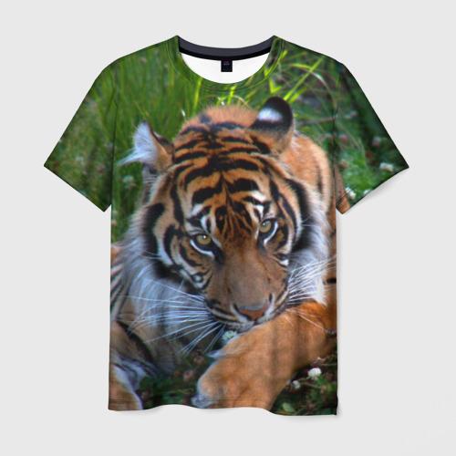 Мужская футболка 3D  Фото 03, Скромный тигр