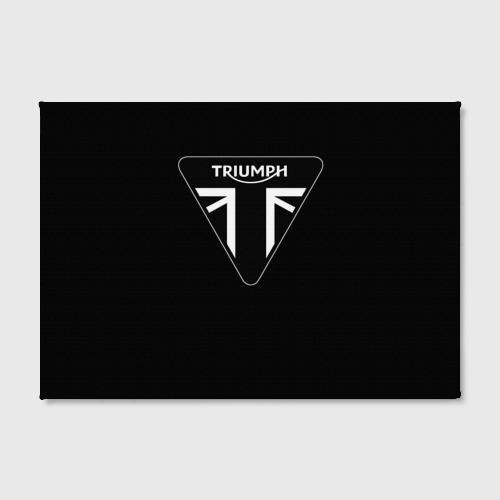 Холст прямоугольный  Фото 02, Triumph 4