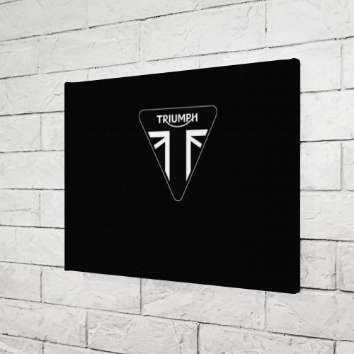 Холст прямоугольный  Фото 03, Triumph 4