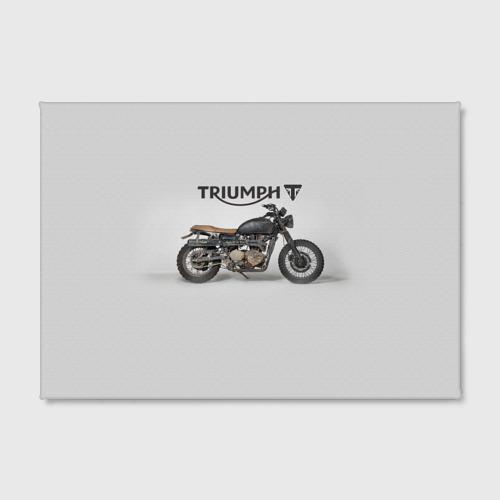 Холст прямоугольный Triumph 2