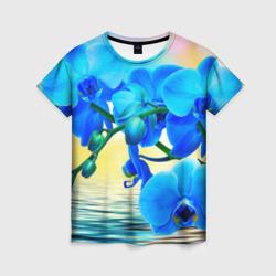 Орхидеи - интернет магазин Futbolkaa.ru