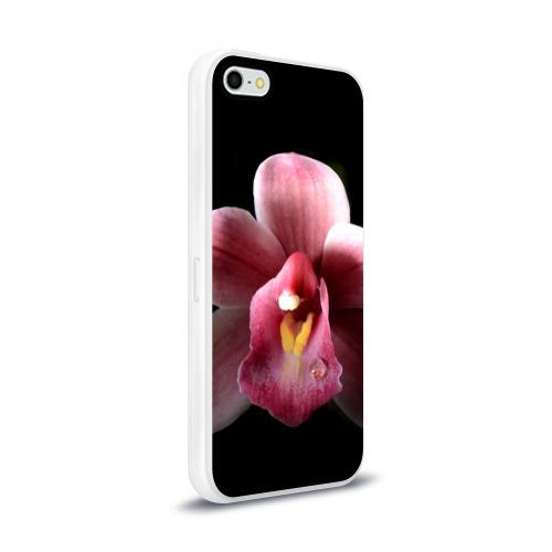 Чехол для Apple iPhone 5/5S силиконовый глянцевый  Фото 02, Орхидея