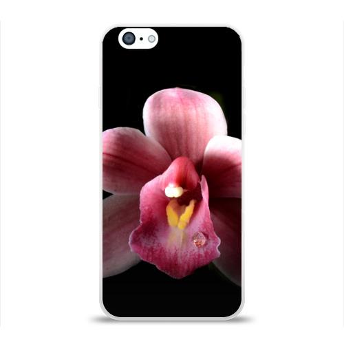 Чехол для Apple iPhone 6 силиконовый глянцевый  Фото 01, Орхидея