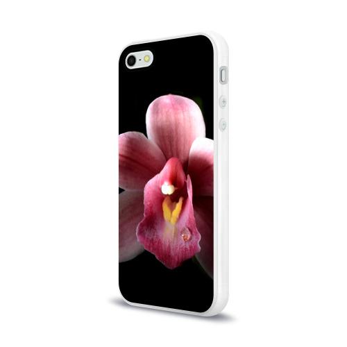 Чехол для Apple iPhone 5/5S силиконовый глянцевый  Фото 03, Орхидея