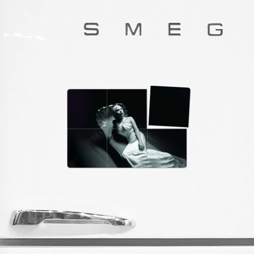 Магнитный плакат 3Х2  Фото 02, Lady Gaga