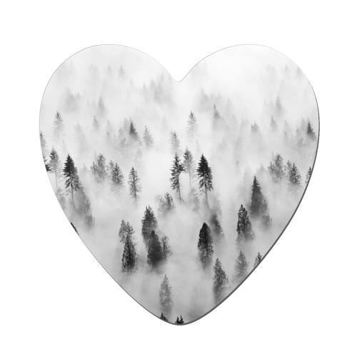 Ельник в тумане