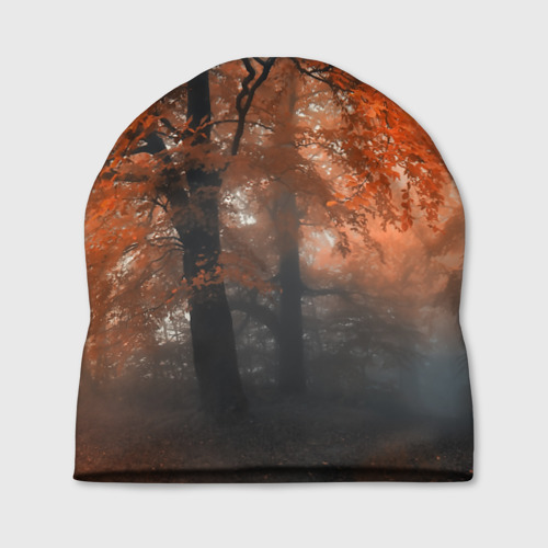 Шапка 3D  Фото 01, Осень