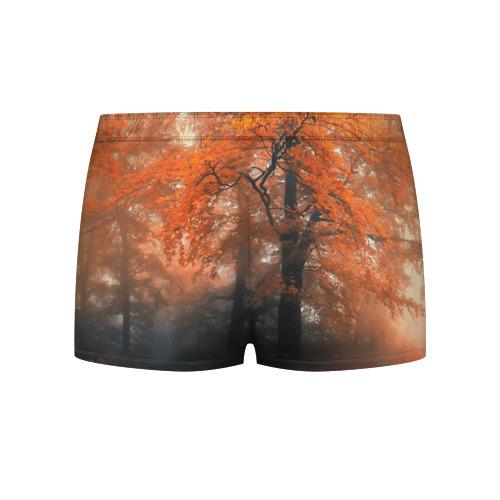 Мужские трусы 3D  Фото 02, Осень
