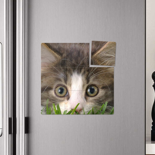 Магнитный плакат 3Х3  Фото 04, Кот