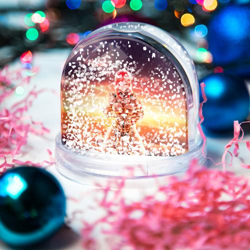 Водяной шар со снегом  Фото 04, Fairy Tail