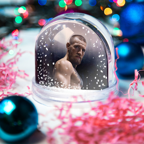 Водяной шар со снегом  Фото 03, Конор Макгрегор